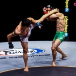 Best shots of ONE FC 2014
